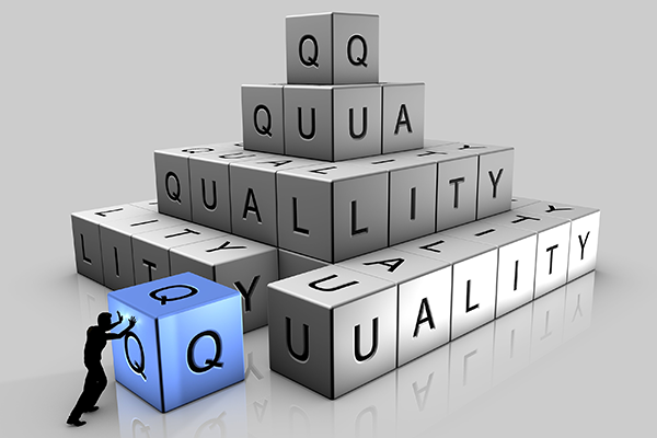 Medical Device Quality Management System